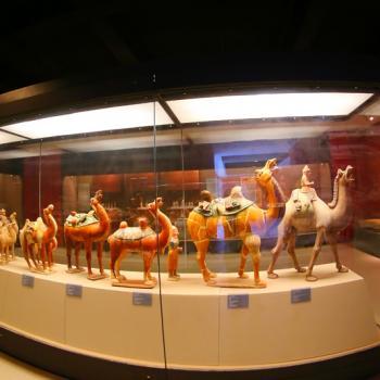Tang West Market Museum